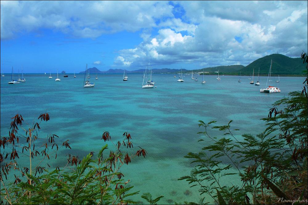 Entre terre et mer dans Martinique 20120703201517_m023_v4