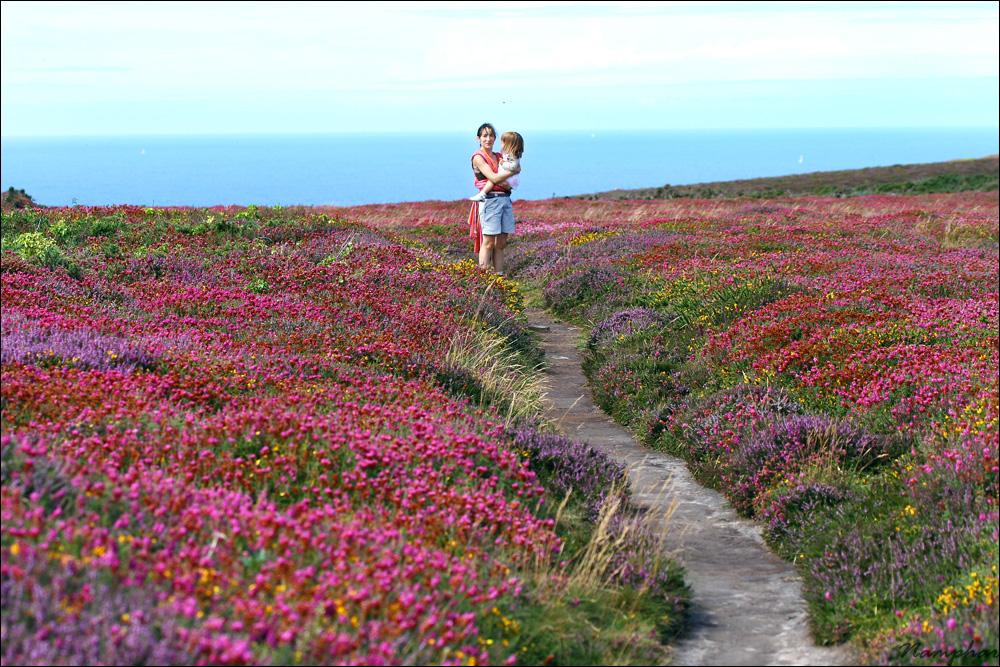 Chemin de fleurs (Namphar's Corner)
